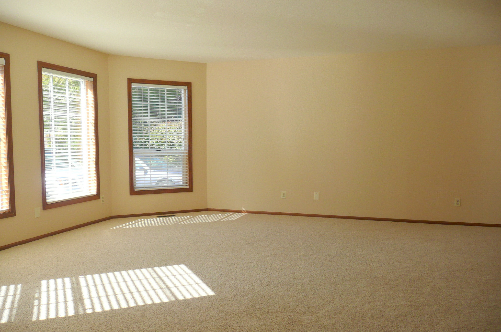 Simple Living Room Staging