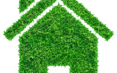 Earth Day 2017 – Go GREENER at home and SAVE $$ too!